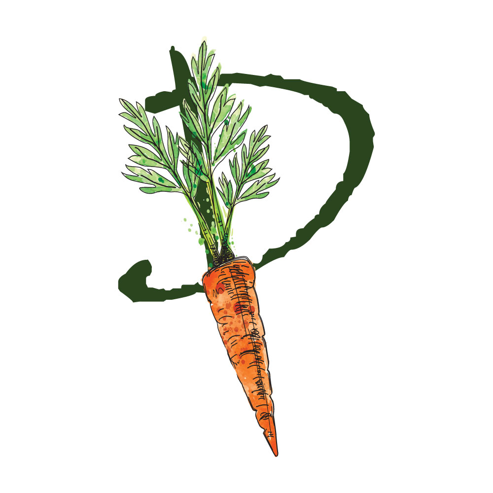 Plant Test Kitchen logo for www.planttestkitchen.com