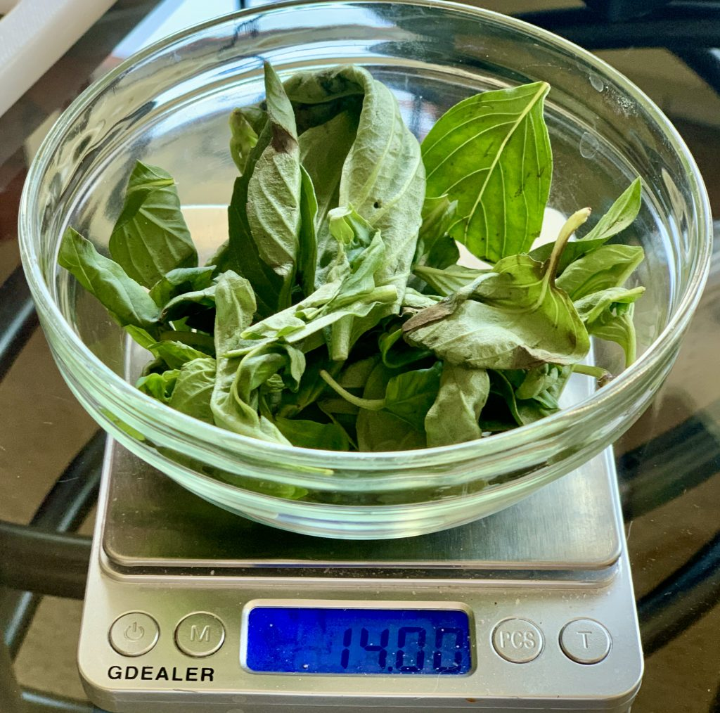 Weighing basil on a food scale